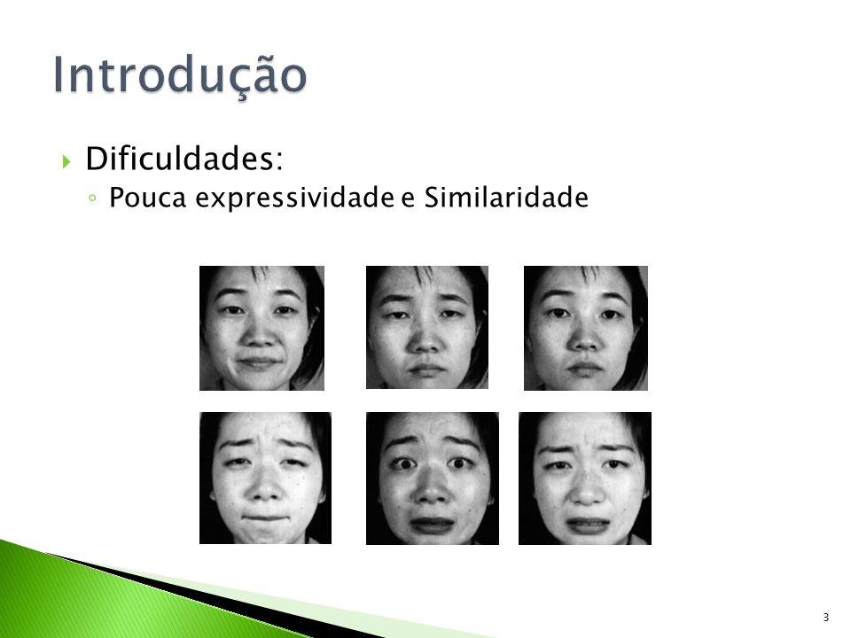 Introdução Dificuldades: Pouca expressividade e Similaridade