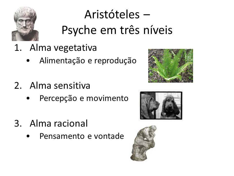 Aristóteles – Psyche em três níveis