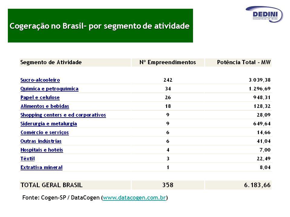 Cogeração no Brasil– por segmento de atividade
