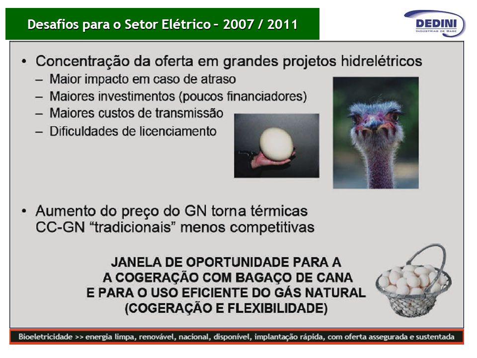 Desafios para o Setor Elétrico – 2007 / 2011