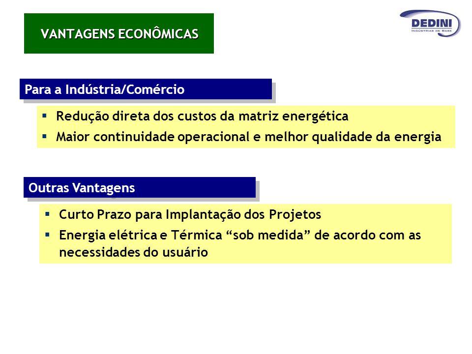 VANTAGENS ECONÔMICAS Para a Indústria/Comércio. Redução direta dos custos da matriz energética.