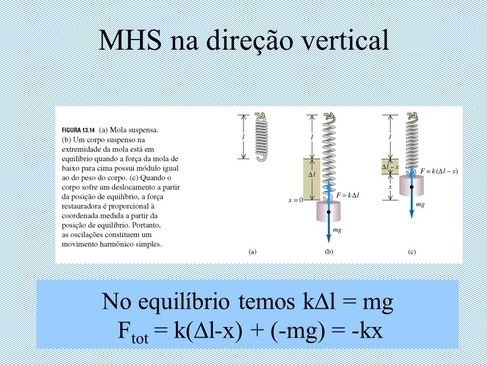 MHS na direção vertical