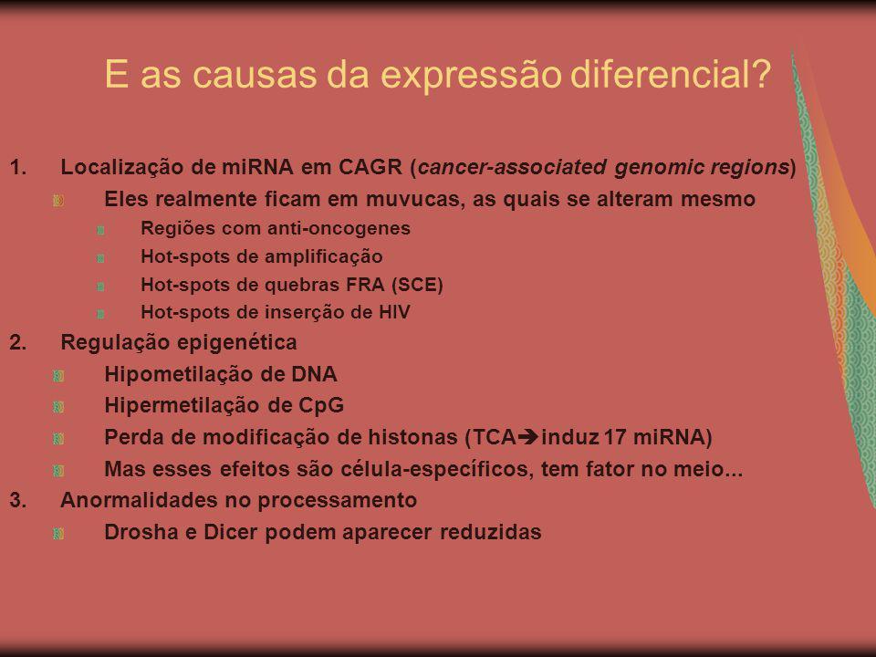 E as causas da expressão diferencial