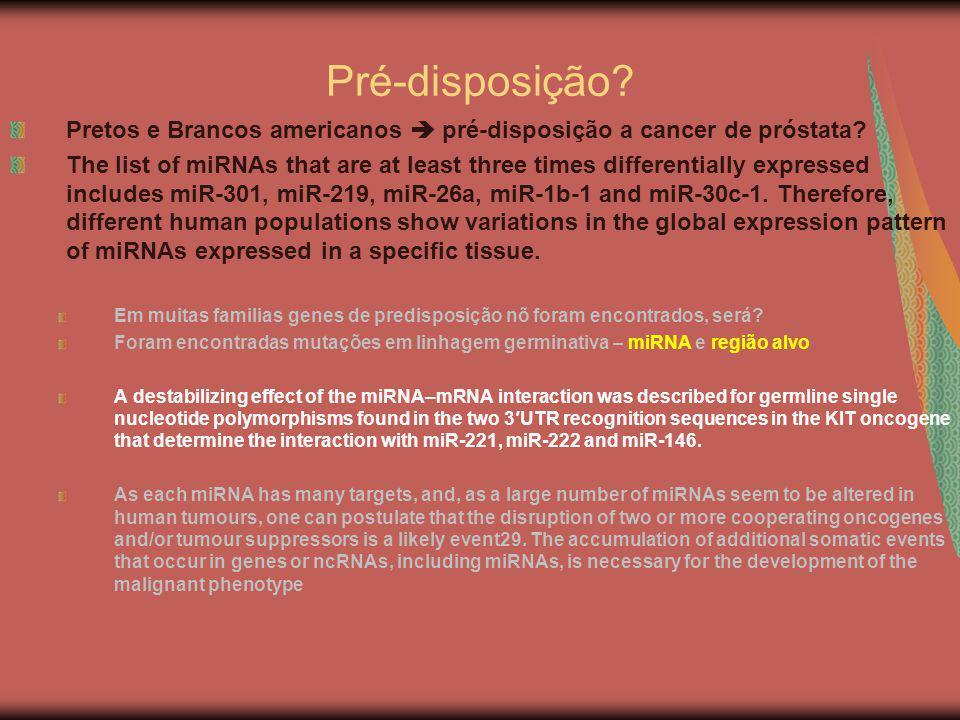 Pré-disposição Pretos e Brancos americanos  pré-disposição a cancer de próstata