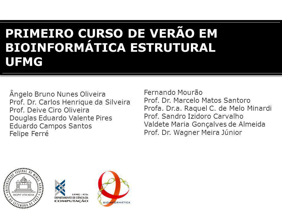 PRIMEIRO CURSO DE VERÃO EM BIOINFORMÁTICA ESTRUTURAL UFMG