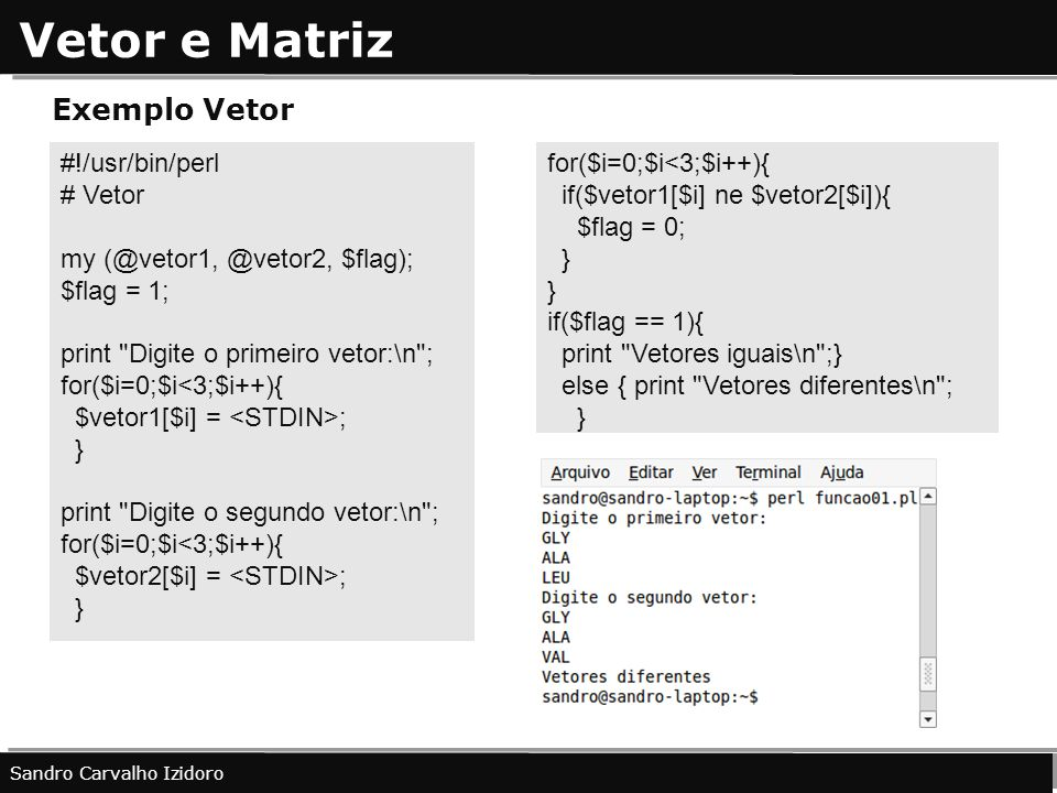 Vetor e Matriz Exemplo Vetor #!/usr/bin/perl # Vetor