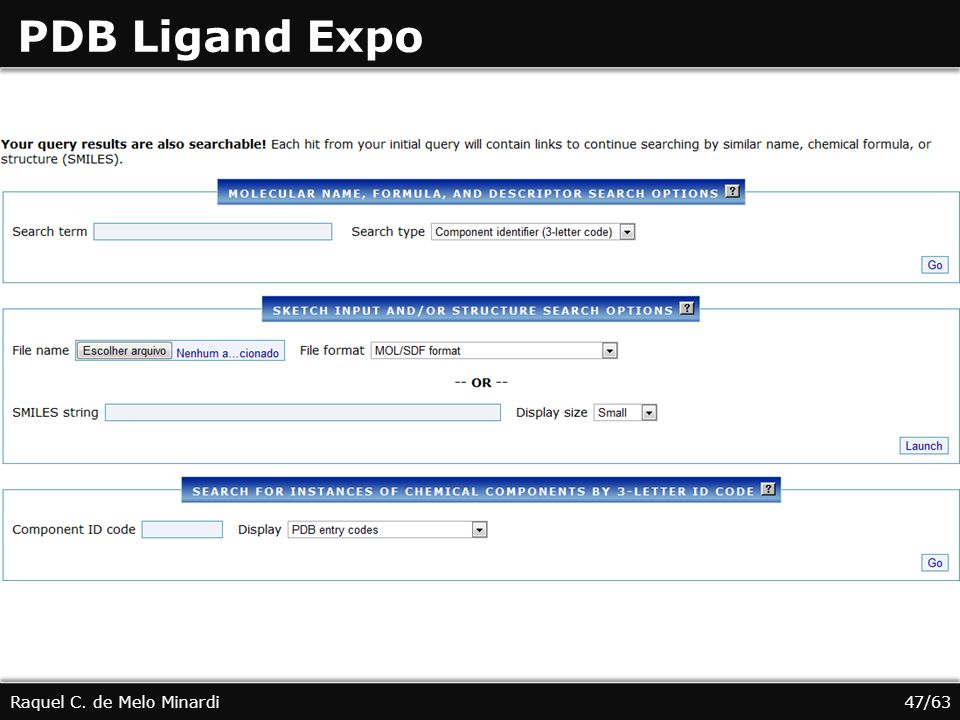 PDB Ligand Expo Raquel C. de Melo Minardi 47/63