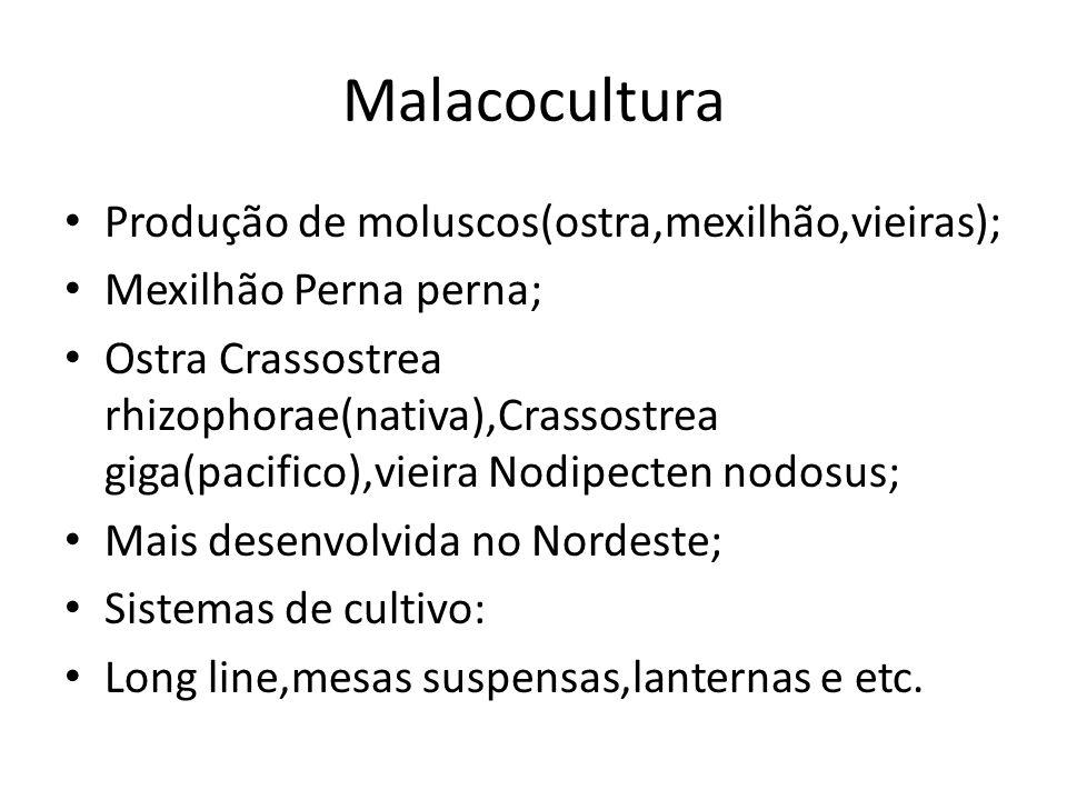 Malacocultura Produção de moluscos(ostra,mexilhão,vieiras);