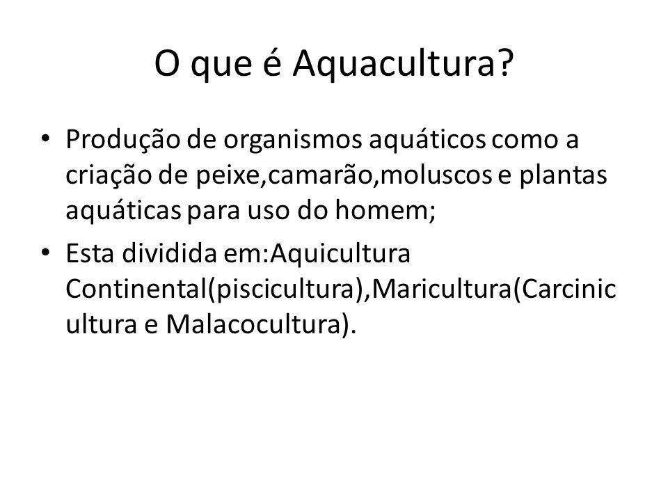 O que é Aquacultura Produção de organismos aquáticos como a criação de peixe,camarão,moluscos e plantas aquáticas para uso do homem;