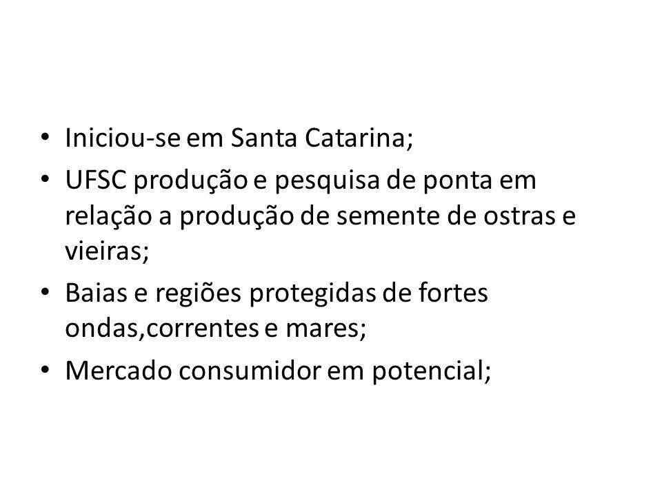 Iniciou-se em Santa Catarina;