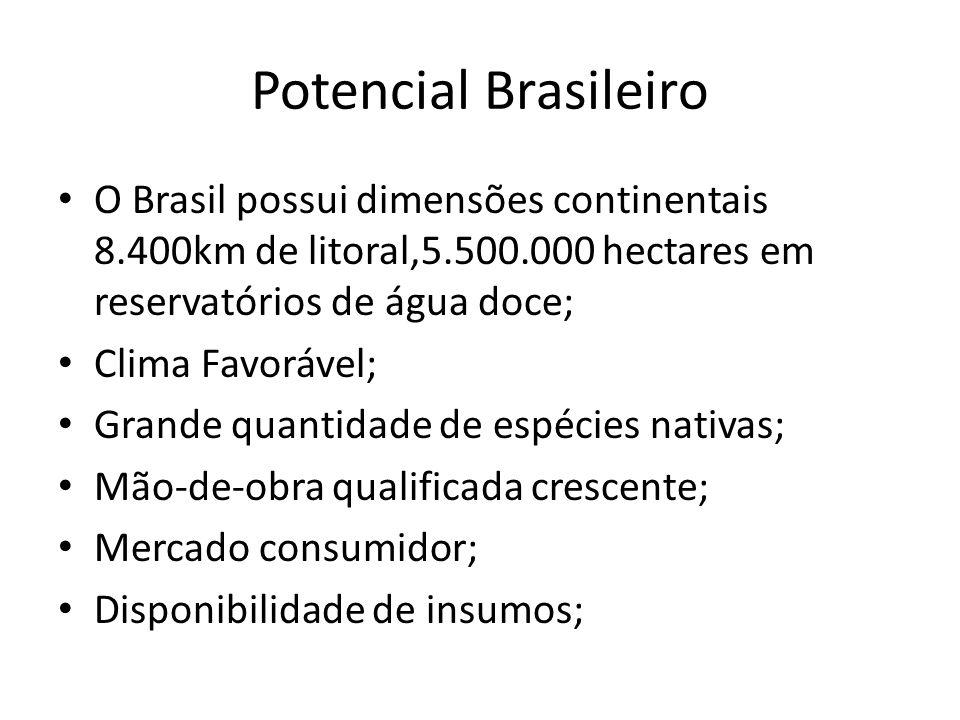 Potencial Brasileiro O Brasil possui dimensões continentais 8.400km de litoral,5.500.000 hectares em reservatórios de água doce;