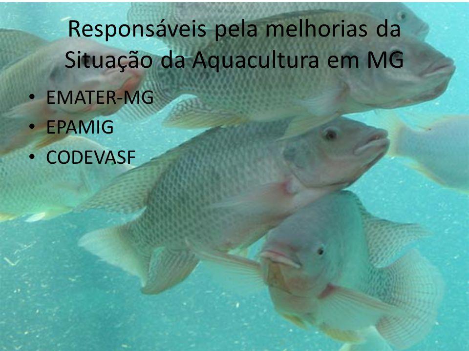 Responsáveis pela melhorias da Situação da Aquacultura em MG