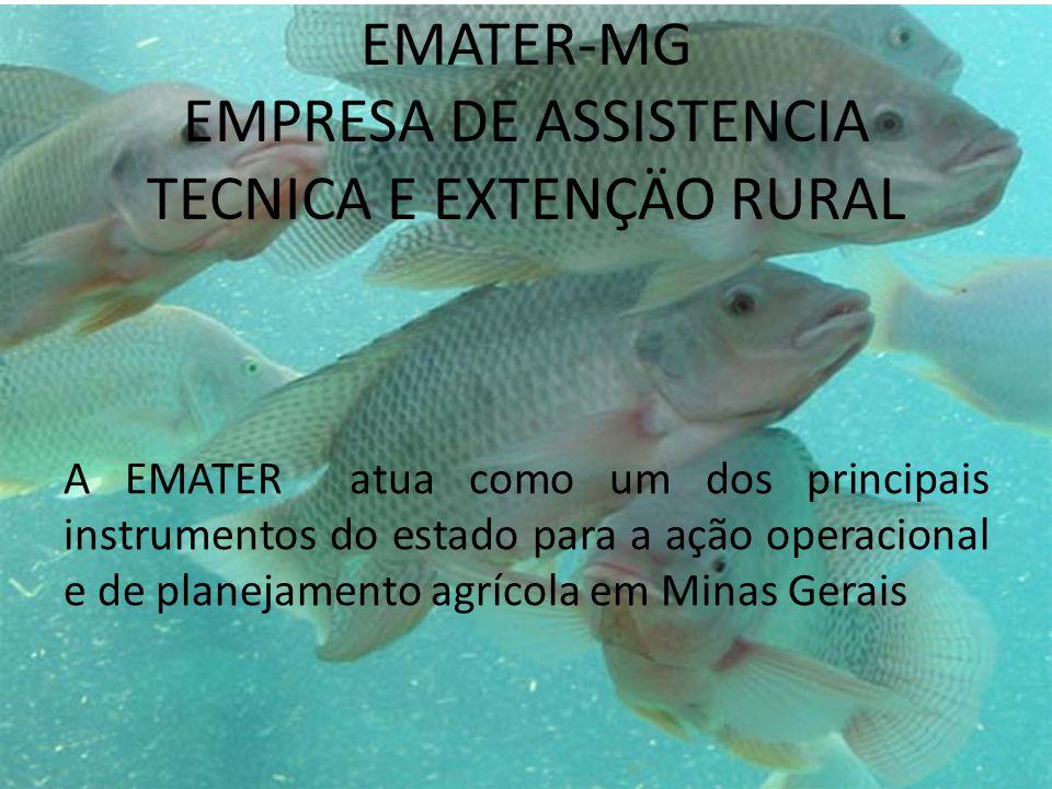 EMATER-MG EMPRESA DE ASSISTENCIA TECNICA E EXTENÇÄO RURAL