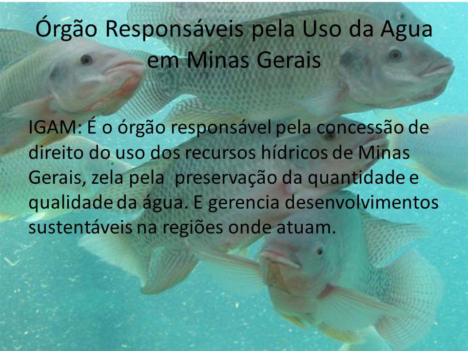 Órgão Responsáveis pela Uso da Agua em Minas Gerais
