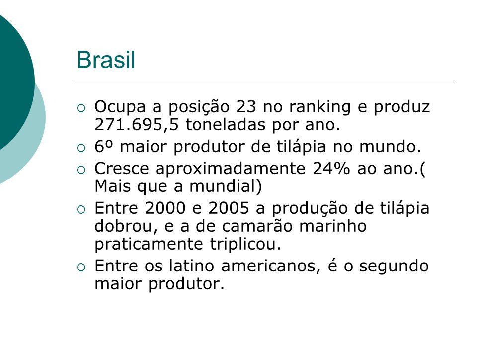 Brasil Ocupa a posição 23 no ranking e produz 271.695,5 toneladas por ano. 6º maior produtor de tilápia no mundo.