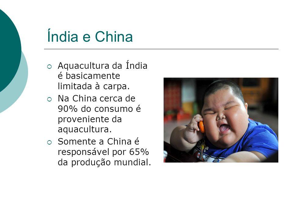 Índia e China Aquacultura da Índia é basicamente limitada à carpa.