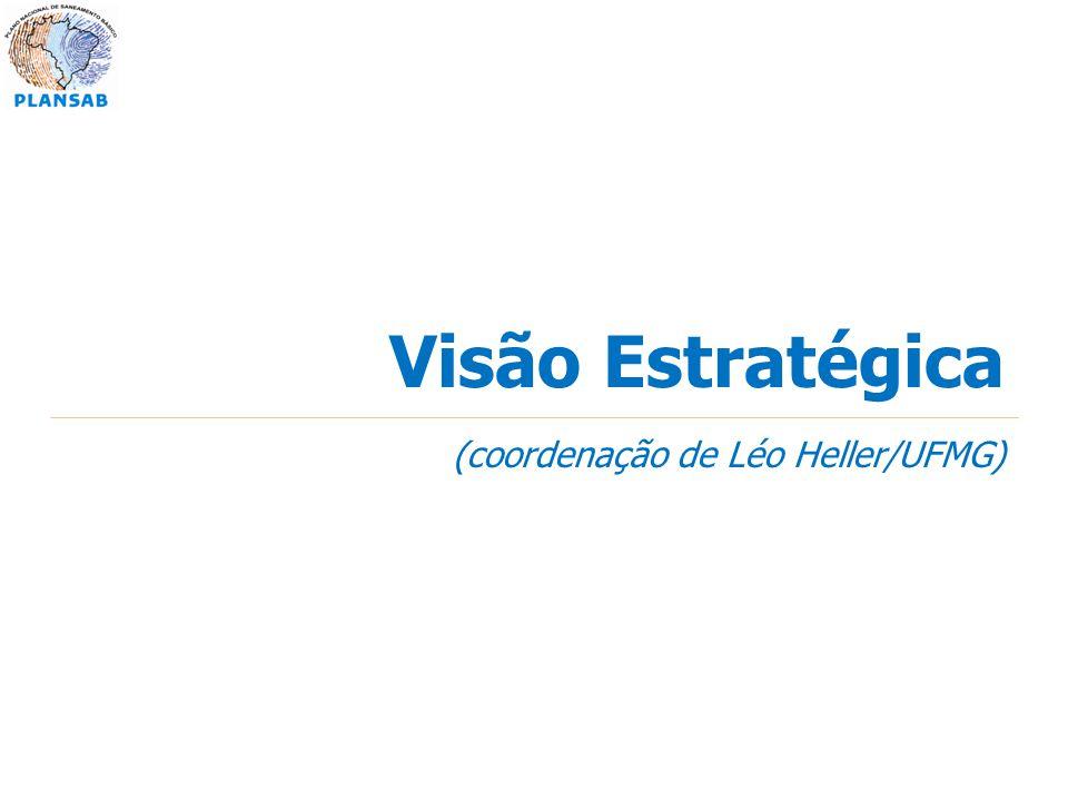 Visão Estratégica (coordenação de Léo Heller/UFMG)