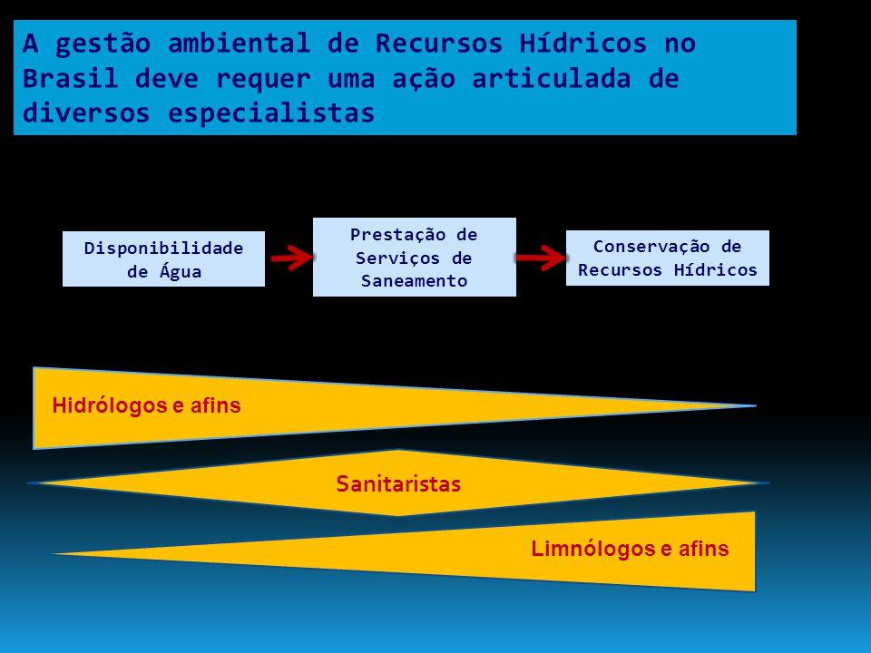 A gestão ambiental de Recursos Hídricos no Brasil deve requer uma ação articulada de diversos especialistas