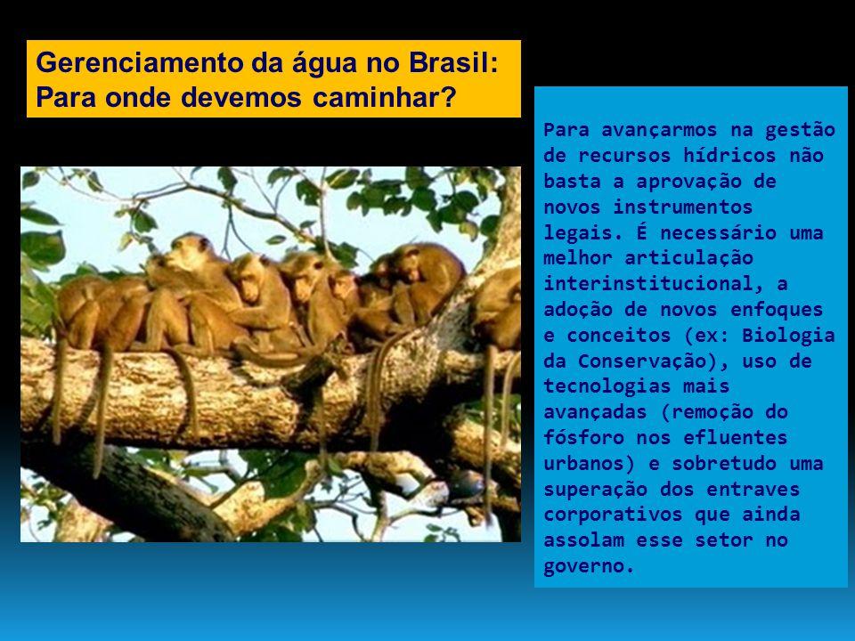 Gerenciamento da água no Brasil: Para onde devemos caminhar