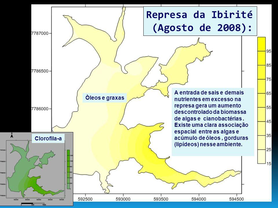 Represa da Ibirité (Agosto de 2008):