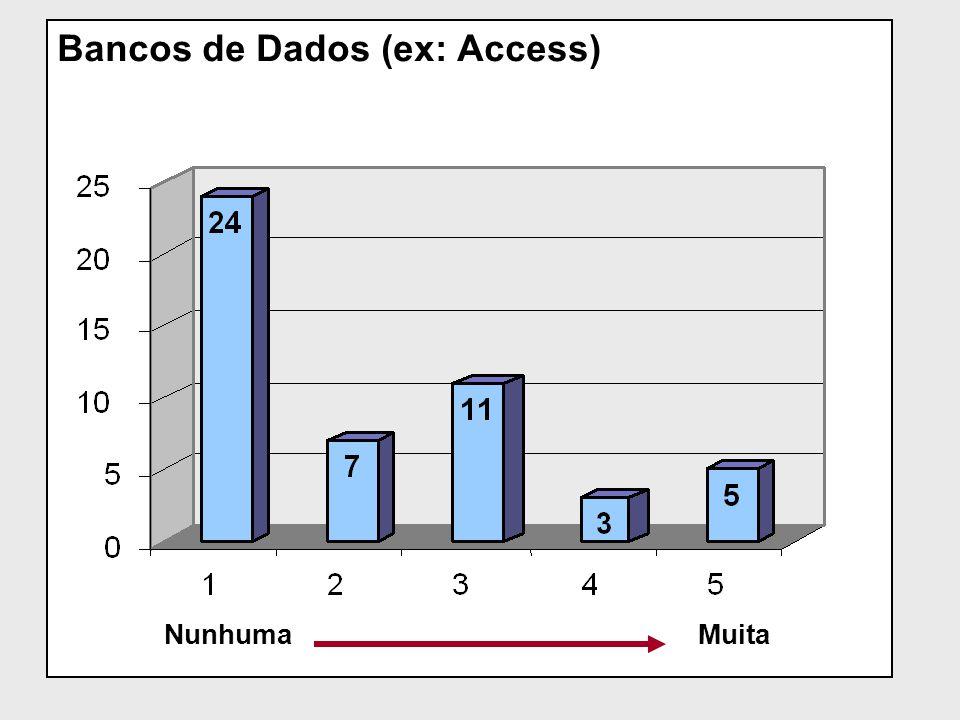 Bancos de Dados (ex: Access)