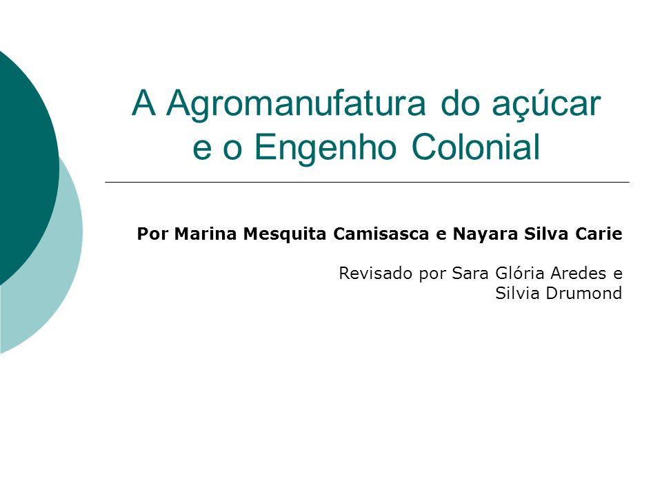 A Agromanufatura do açúcar e o Engenho Colonial