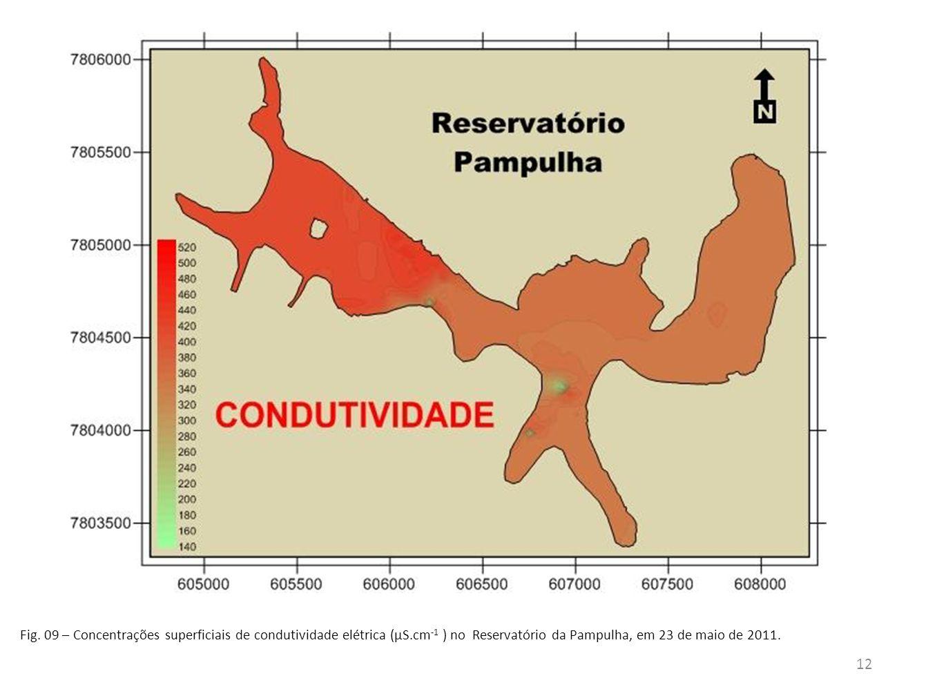 Fig. 09 – Concentrações superficiais de condutividade elétrica (µS