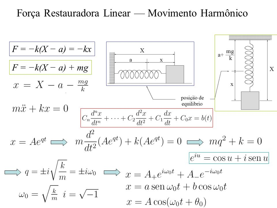 Força Restauradora Linear — Movimento Harmônico