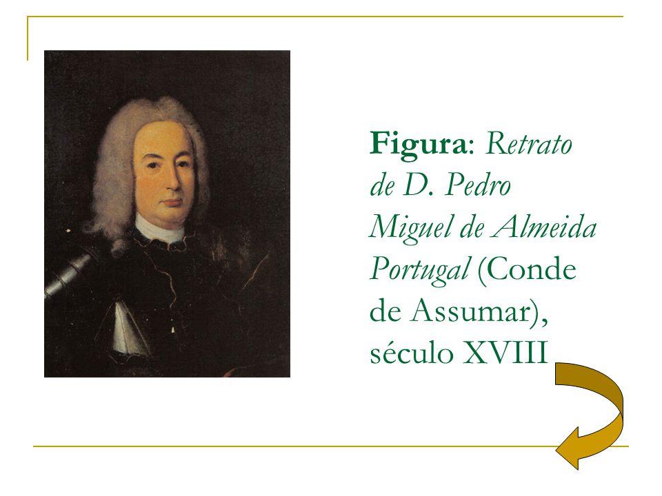 Figura: Retrato de D. Pedro Miguel de Almeida Portugal (Conde de Assumar), século XVIII