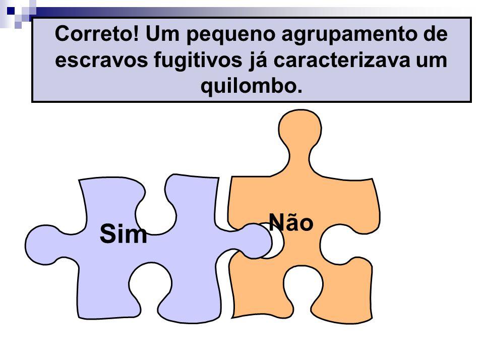 Correto! Um pequeno agrupamento de escravos fugitivos já caracterizava um quilombo.