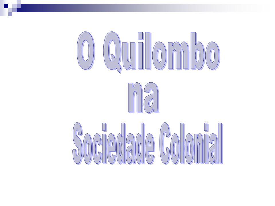 O Quilombo na Sociedade Colonial