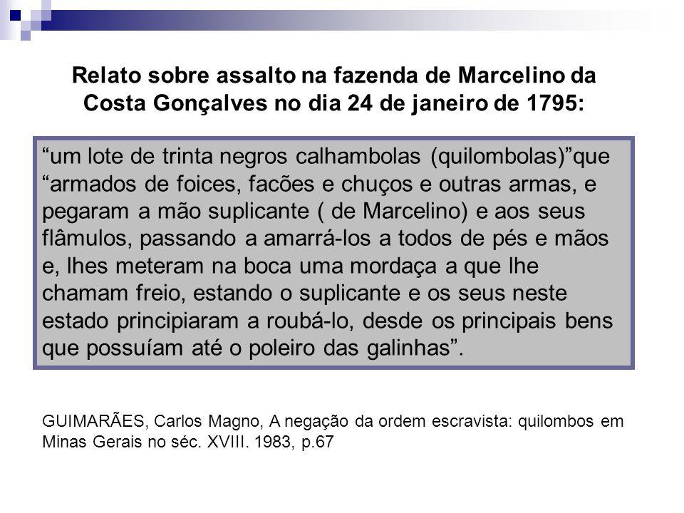 Relato sobre assalto na fazenda de Marcelino da Costa Gonçalves no dia 24 de janeiro de 1795: