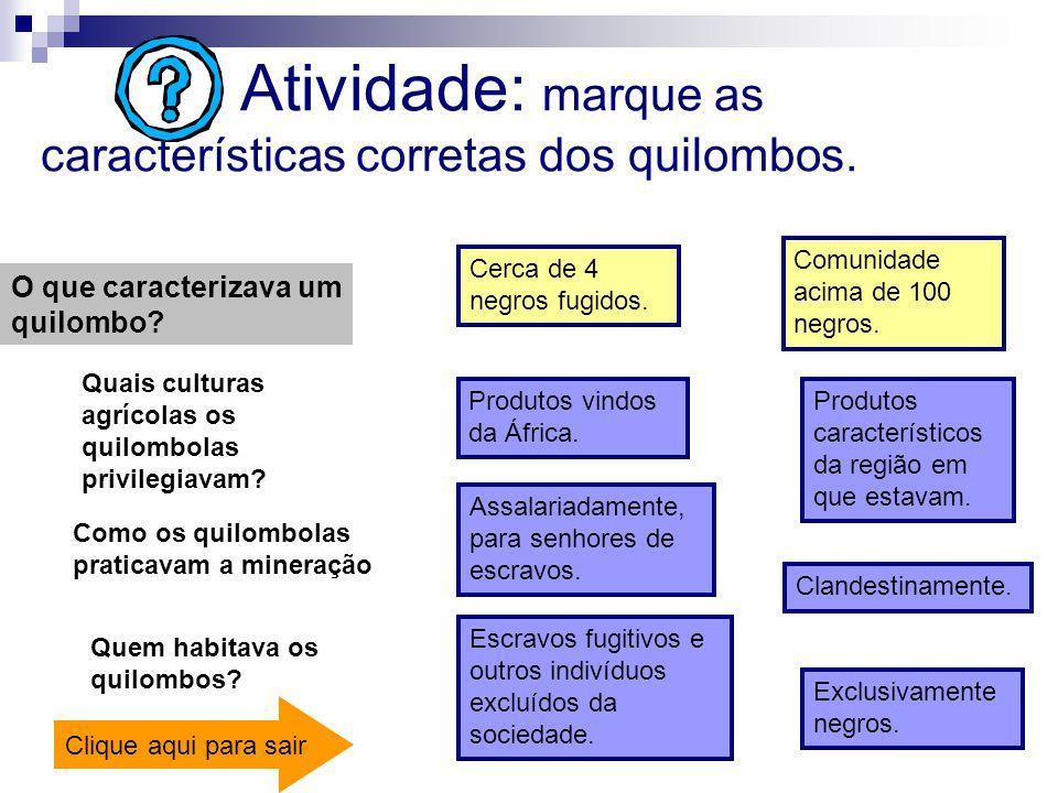 Atividade: marque as características corretas dos quilombos.