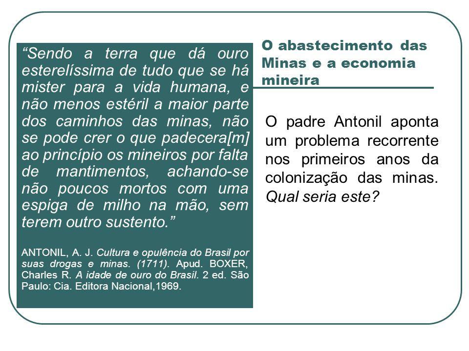O abastecimento das Minas e a economia mineira