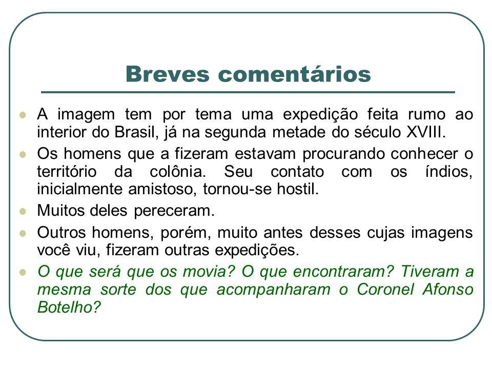 Breves comentários A imagem tem por tema uma expedição feita rumo ao interior do Brasil, já na segunda metade do século XVIII.