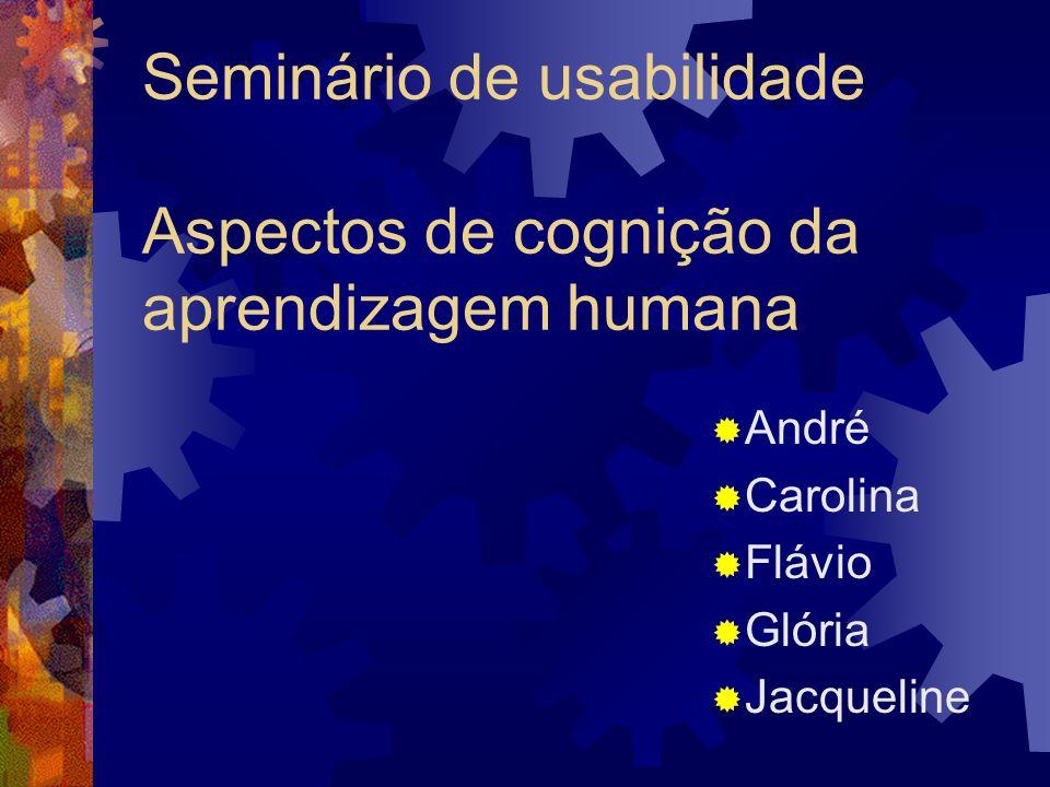 Seminário de usabilidade Aspectos de cognição da aprendizagem humana