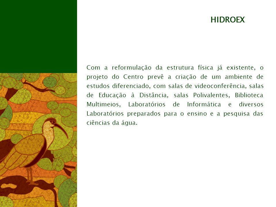 HIDROEX