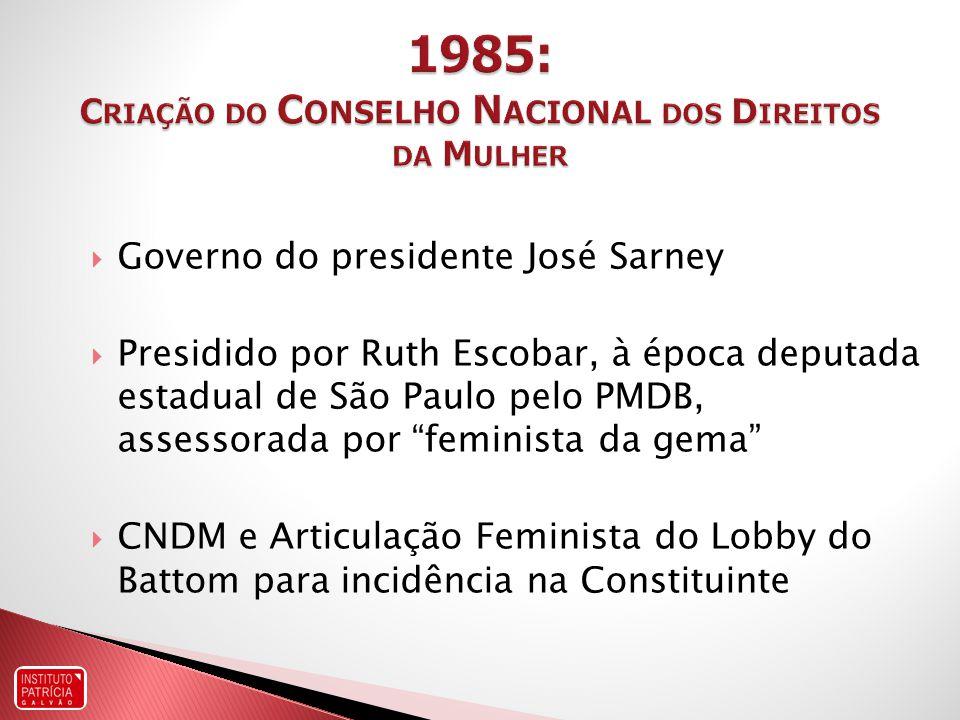 1985: Criação do Conselho Nacional dos Direitos da Mulher