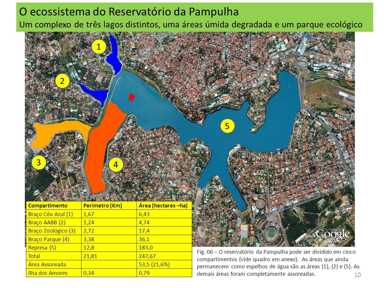 O ecossistema do Reservatório da Pampulha