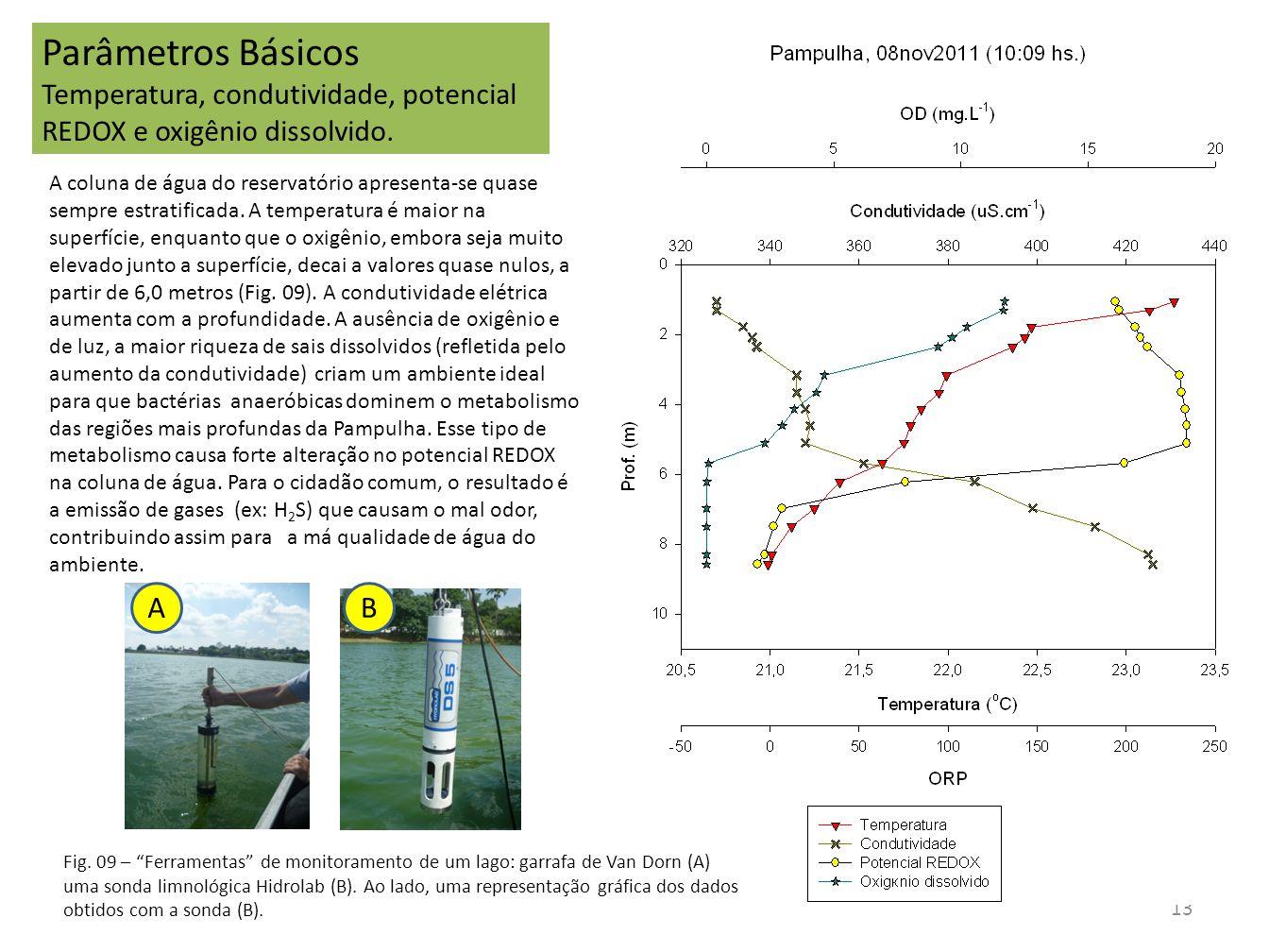Parâmetros Básicos Temperatura, condutividade, potencial REDOX e oxigênio dissolvido.