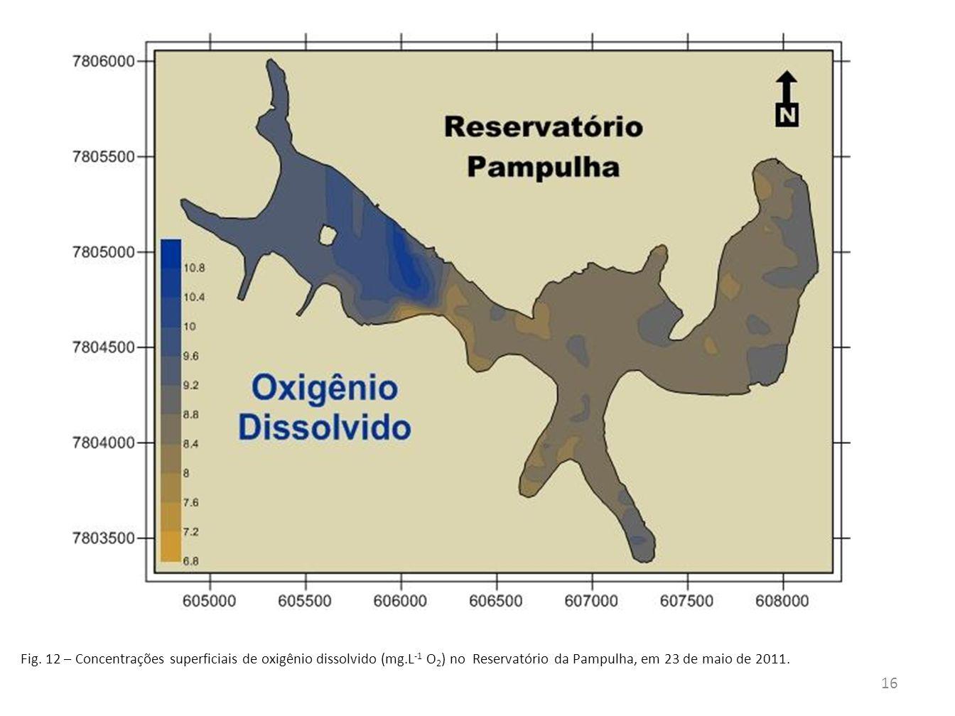 Fig. 12 – Concentrações superficiais de oxigênio dissolvido (mg