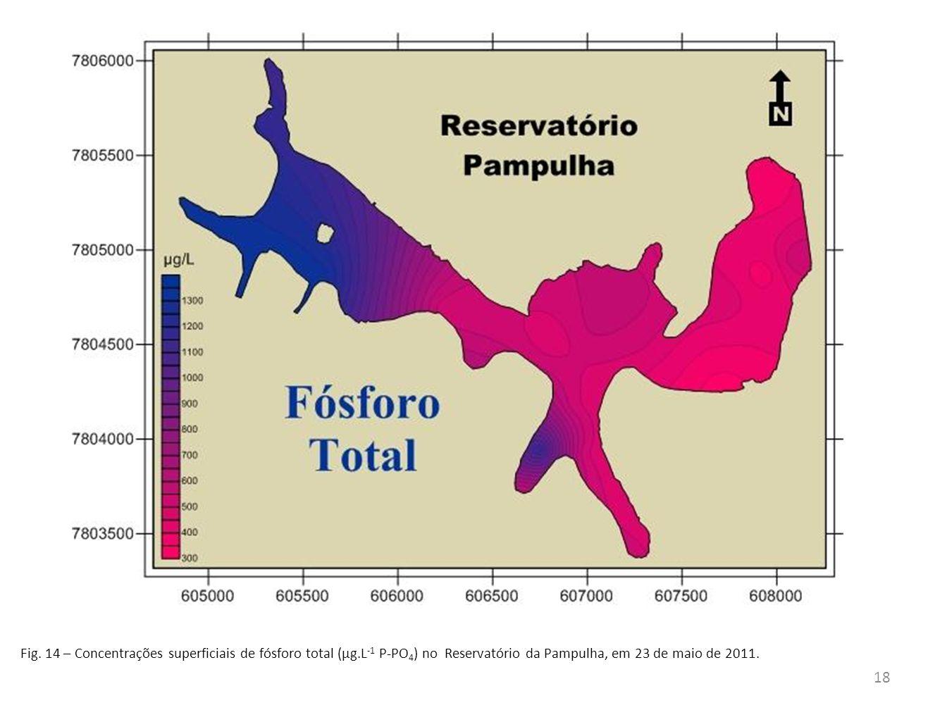 Fig. 14 – Concentrações superficiais de fósforo total (µg