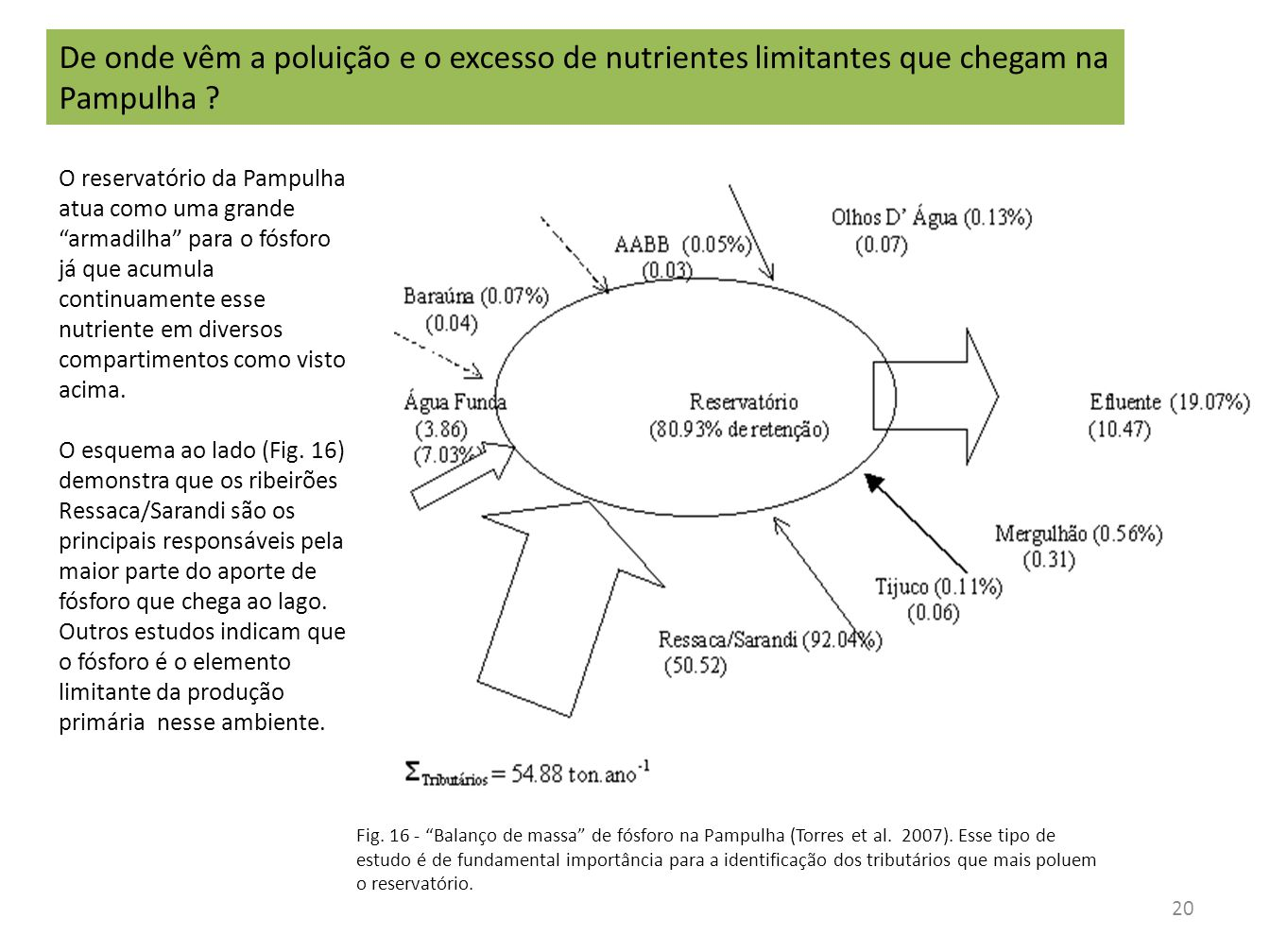 De onde vêm a poluição e o excesso de nutrientes limitantes que chegam na Pampulha
