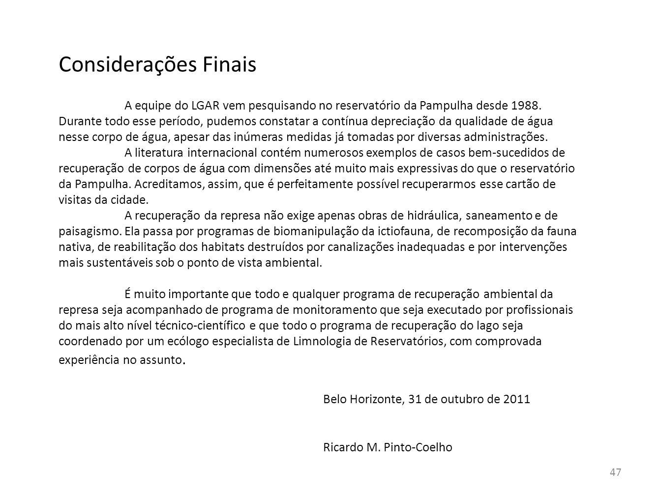 Considerações Finais Belo Horizonte, 31 de outubro de 2011