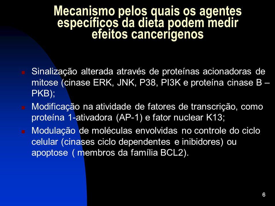 Mecanismo pelos quais os agentes específicos da dieta podem medir efeitos cancerígenos