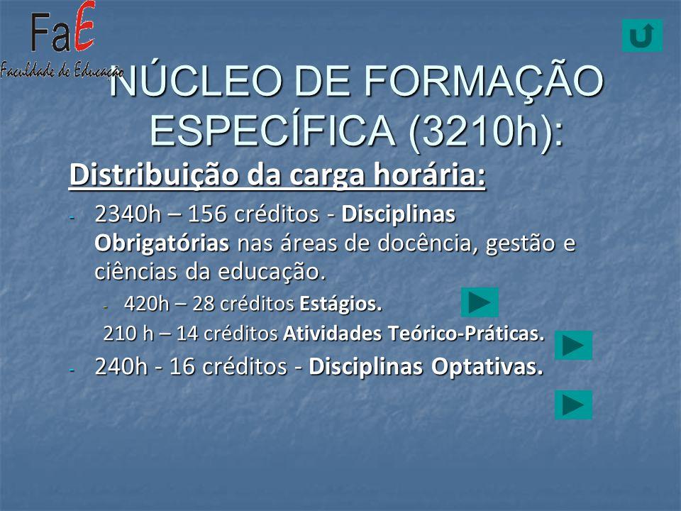 NÚCLEO DE FORMAÇÃO ESPECÍFICA (3210h):