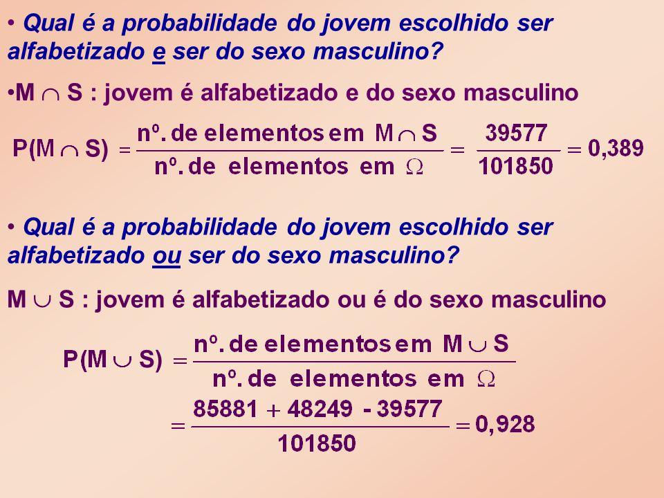 M  S : jovem é alfabetizado e do sexo masculino