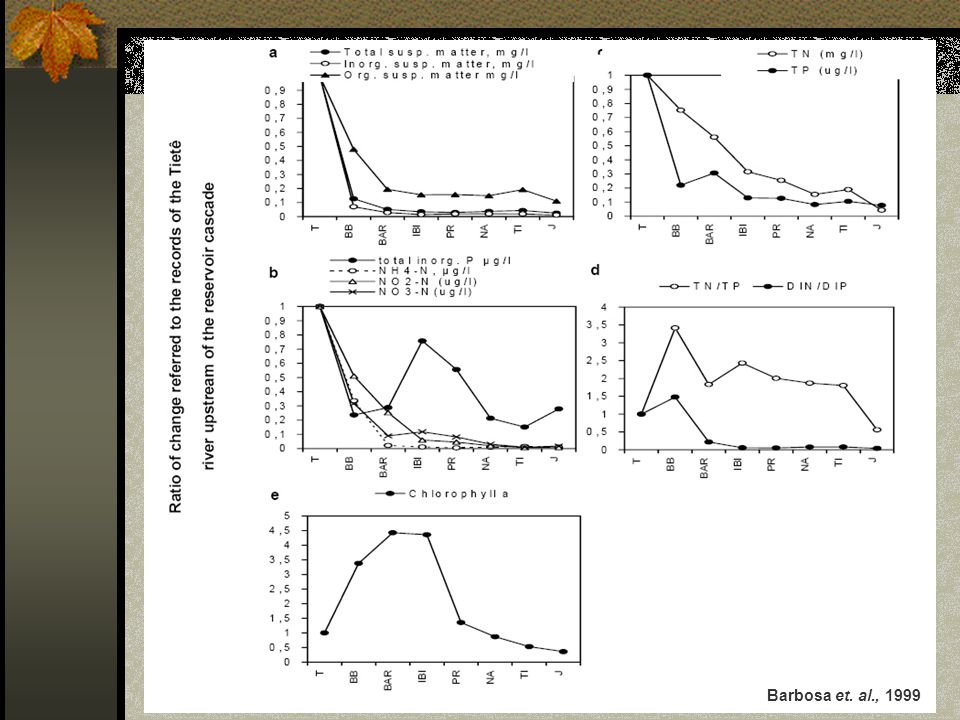 Barbosa et. al., 1999