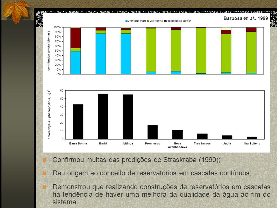 Confirmou muitas das predições de Straskraba (1990);