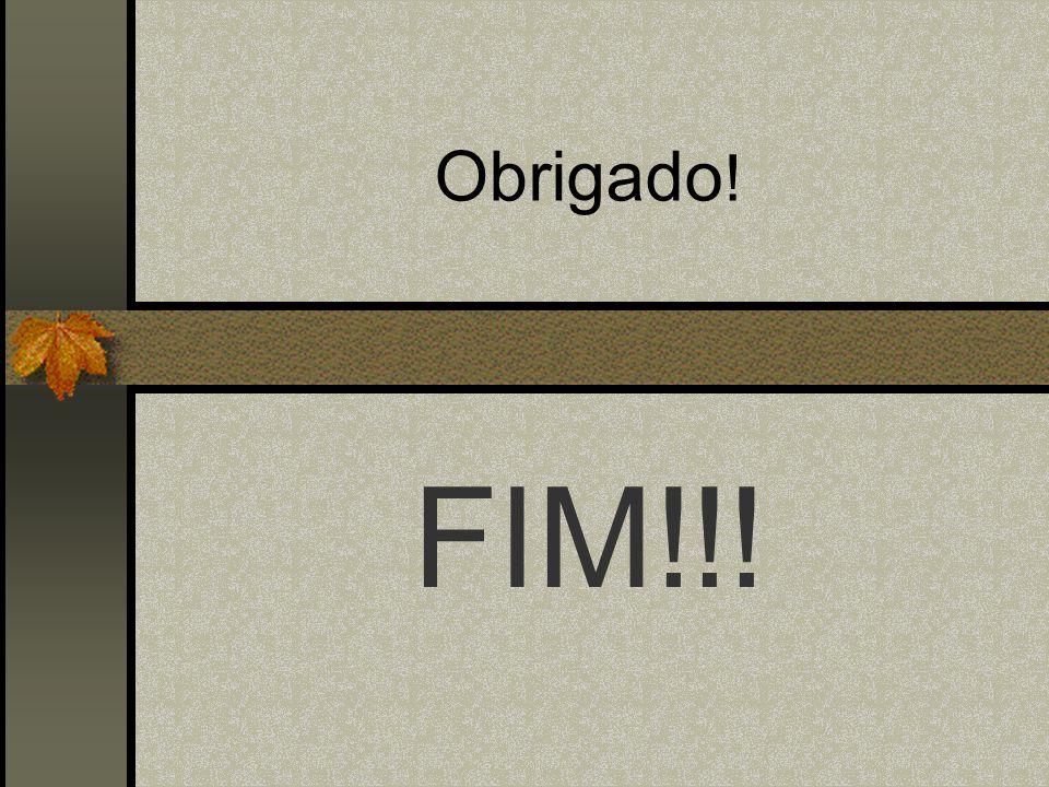 Obrigado! FIM!!!